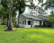 3884 Tanager Place, Palm Harbor image