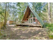 64874 E LUPINE  DR, Rhododendron image