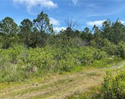 TBD Sw 156th Place, Dunnellon image