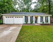 55 Dew Fall CT Court, The Woodlands image