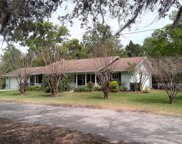 17631 Grove View Drive, Lutz image