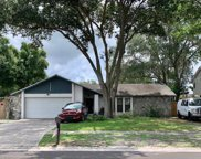 14911 Oldgate Place, Tampa image