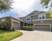 13505 Freemark Briar Place, Riverview image