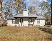 808 Mill River Road, Jacksonville image