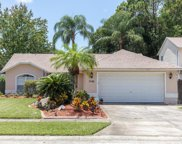 7105 Woodibis Drive, New Port Richey image