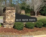 Lot 25  Blue Water Pointe Dr, Jasper image