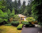 3927 Steamboat Lp NW, Olympia image