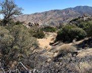 0     Manzanita, Mountain Center image