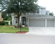 11203 Oyster Bay Circle, New Port Richey image