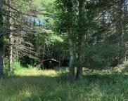 Boy Scout Camp Road, Daniels image