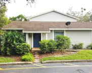 14621 Lake Forest Drive, Lutz image