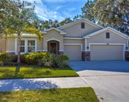 10403 Pleasant Spring Way, Riverview image