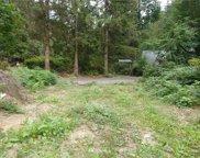 52922 S Riverside Road, Gold Bar image