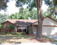 1914 River Crossing Drive, Valrico image