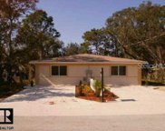 1273 London Avenue, Spring Hill image