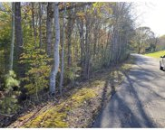 Lot 11 Little Creek  Rd, Moneta image