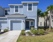 7101 Summer Holly Place, Riverview image