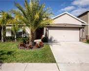 12402 Ballentrae Forest Drive, Riverview image
