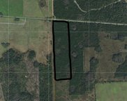 15539 County Road 305 Highway, Bunnell image