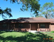 11639 Lithia Pinecrest Road, Lithia image