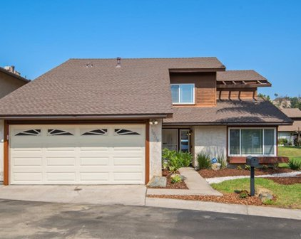 10110 Cliffside Place, Spring Valley