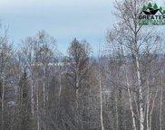 nhn Golden Heart Drive, Fairbanks image