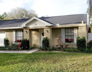 16132 Country Crossing Drive, Tampa image