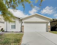 7704 Carriage Pointe Drive, Gibsonton image