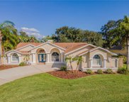2823 Challenger Drive, Palm Harbor image