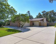 4508 Old Orchard Drive, Tampa image