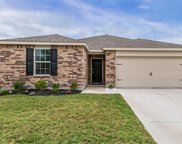 1609 Luckenbach Drive, Forney image