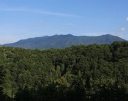 835 Sourwood Dr, Gatlinburg image