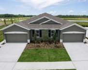 18347 Turning Leaf Circle, Land O' Lakes image
