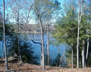 Lot 40  Brushy Creek Pointe, Arley image