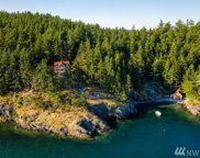 995 Deer Point Rd, Orcas Island image