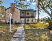 3915 Brightwood Drive, Houston image