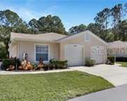 4409 Connery Court, Palm Harbor image