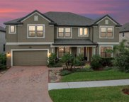 10327 Clover Pine Drive, Tampa image