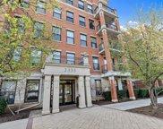 2335 W Belle Plaine Avenue Unit #212, Chicago image