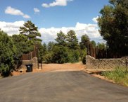 1162 Timber Ranch Road, Showlow image
