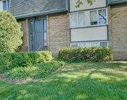 2001 Ammer Ridge Court Unit #25-102, Glenview image