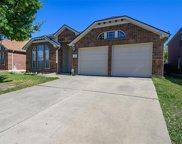 8501 Yellow Buckeye Drive, Fort Worth image