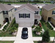 10253 Geese Trail Circle, Sun City Center image