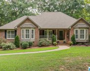 4425 Camp Coleman Rd, Trussville image