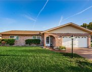 314 Circle Drive, Palm Harbor image