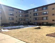 7546 North Bell Avenue Unit 2E, Chicago image