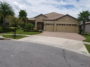 8976 Dove Valley Way, Champions Gate image