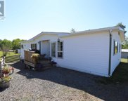 6994 N Netherland Road, Lone Butte image