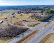 16481 Alabama Highway 157, Moulton image