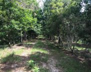 15539 County Road 305, Bunnell image